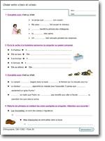 Orthographe CM1-CM2